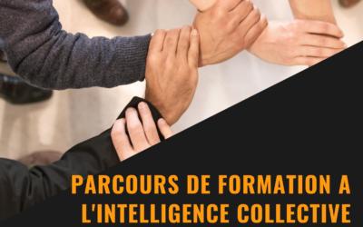 Nouveau parcours de formation : l'intelligence collective